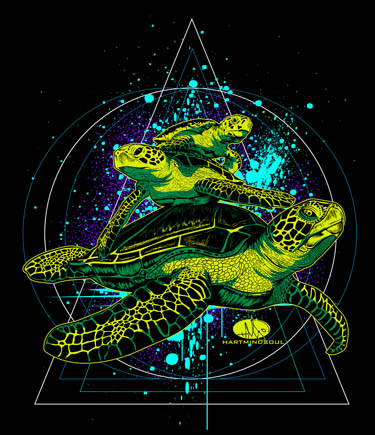 save the turtles hart mind soul
