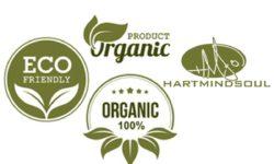 Best Organic Cotton Hat Review