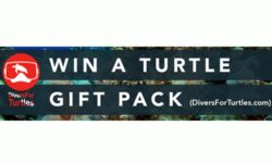 Win Divers For Turtles Gift Pack hms